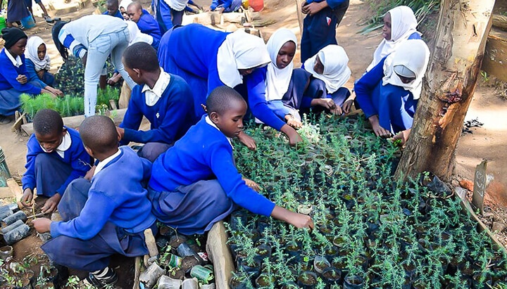 Carbon Free Dining visits tree planting project In Tanzania